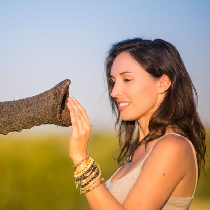 Shannon Wild with African Elephant 09 1024x683