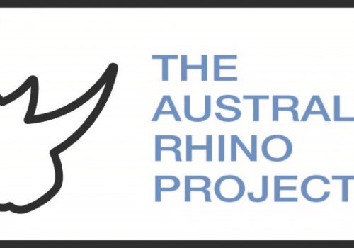 Rhinos to have stopover in New Zealand on their way to Australia