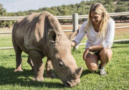 Steph Gilmore and the Australian Rhino Project